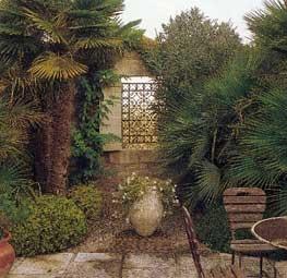 Maison de rêve à Saint Rémy de Provence : 2004-MonJardin8